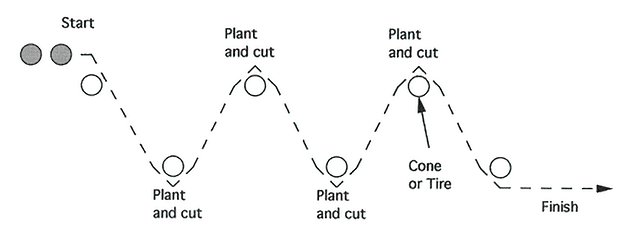 Illustration of RUNNING BACK SPRINT - PLANT AND CUT DRILL